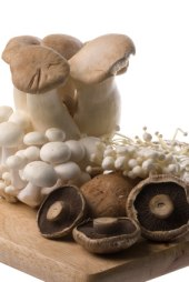 nutritional value of mushrooms